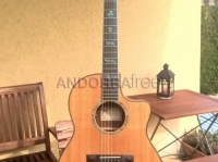 Guitare Acoustique- Acoustic Guitar Larrivée LSV-11e no-cut