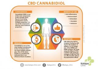 Cbd (natural/local/certificado): 5% cbd /2. 5%thc/10ml =