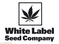 Venta de semillas marca White Label Seeds