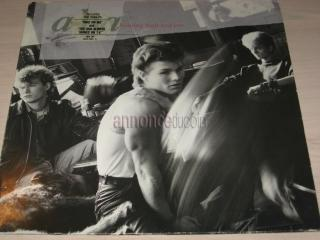 Disque vinyl 33 tours a-ha hunting high and low