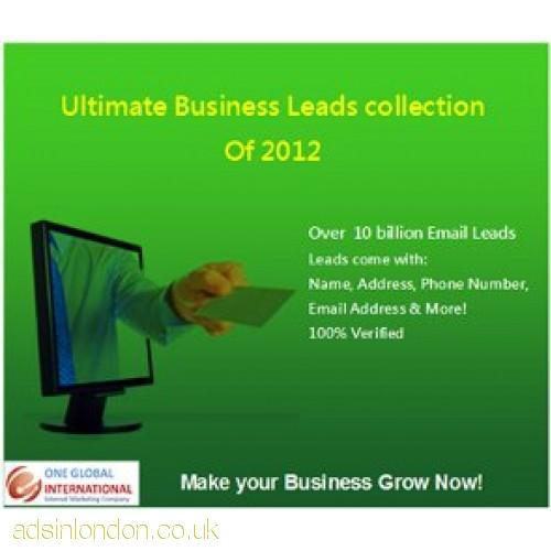 ULTIMATE BUSINESS LEADS COLLECTION OF 2012  #1