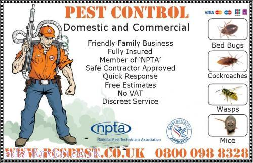 Pest Control London, Bed Bugs, Cockroaches, Mice, Ants...