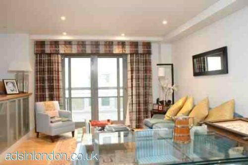 One bedroom beautiful furnished apartment in the heart of London #1
