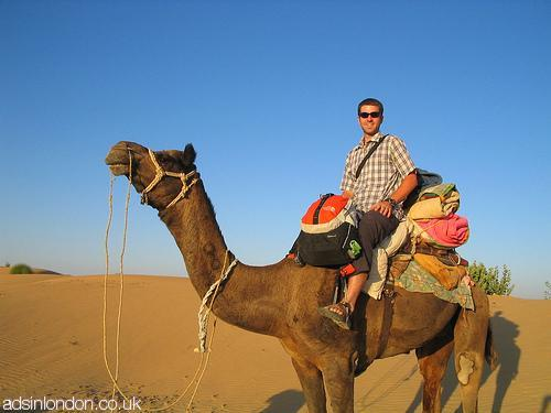 Top Memorable Things to Do in Rajasthan