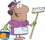 Domestic cleaner, professional, expert in South West London