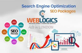Search engine optimization (seo) services – web-logics